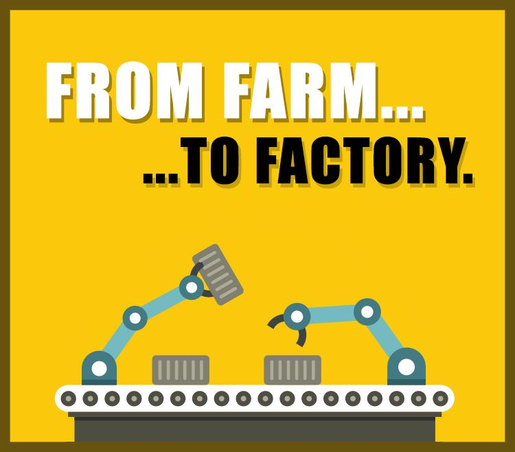 How to Turn Your Farm Into a Factory: Assembly Line, Baby! (an offrs review)