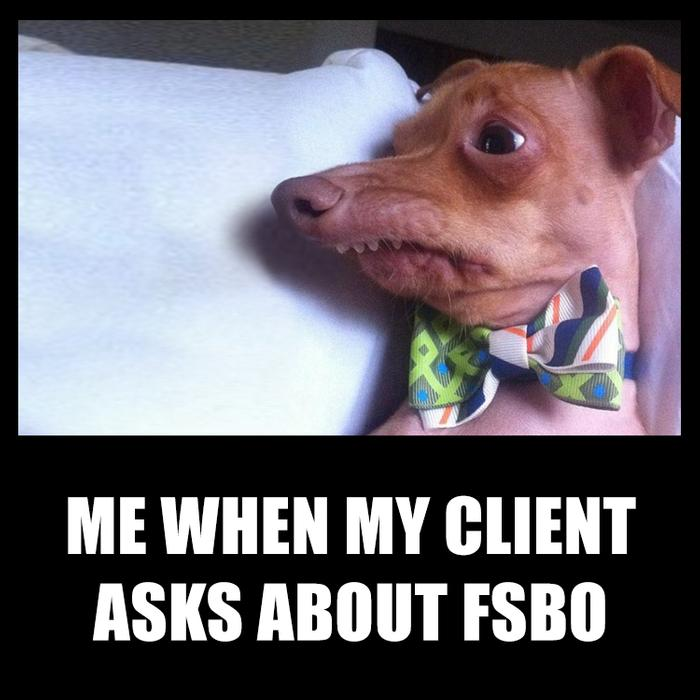 Me when my client asks about FSBO - some agent humor by offrs.com